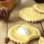 Raw Vegan Pumpkin Cheesecake Recipe | No Bake