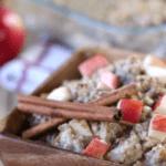 Apple Pie Oatmeal | Slow Cooker Recipes