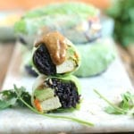 Nutty Noodle Summer Rolls