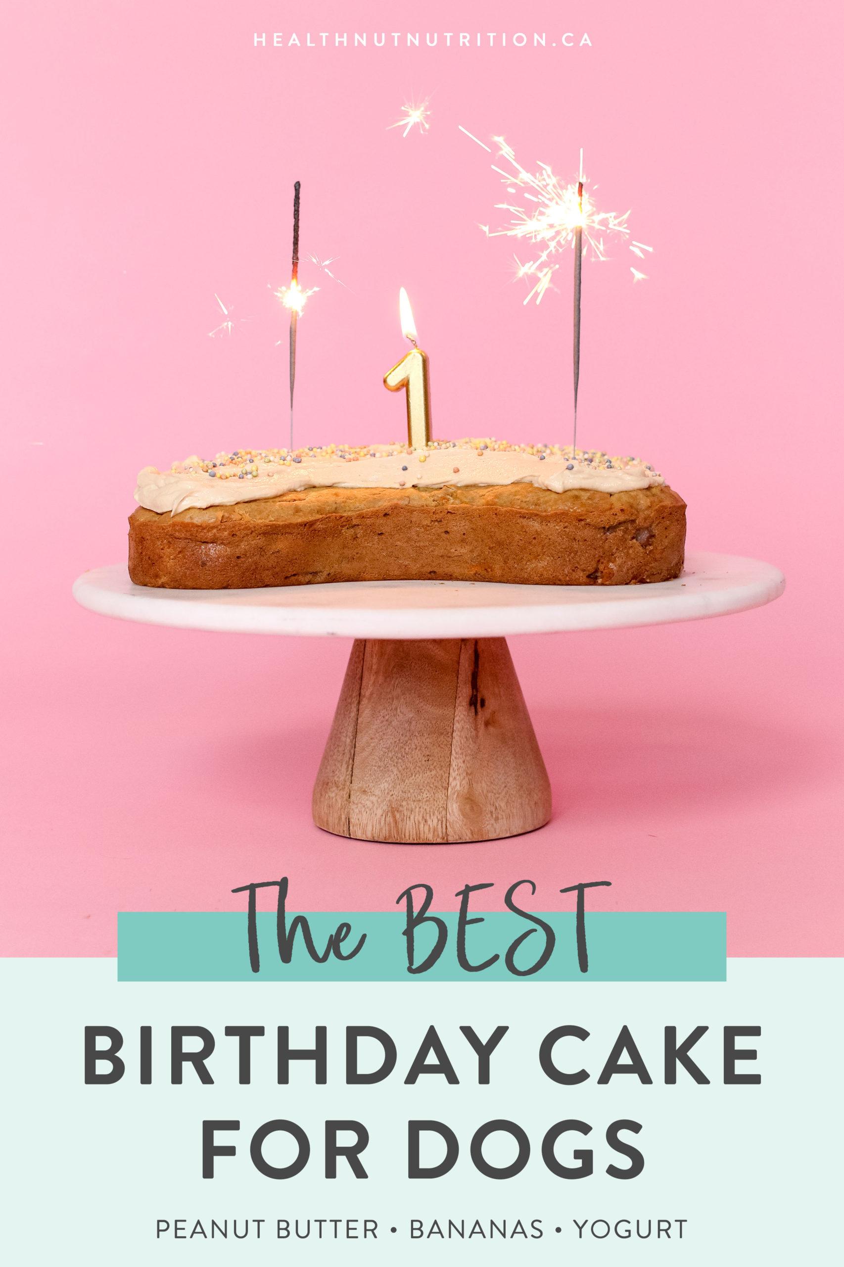 Marvelous The Best Healthy Dog Birthday Cake Healthnut Nutrition Personalised Birthday Cards Veneteletsinfo