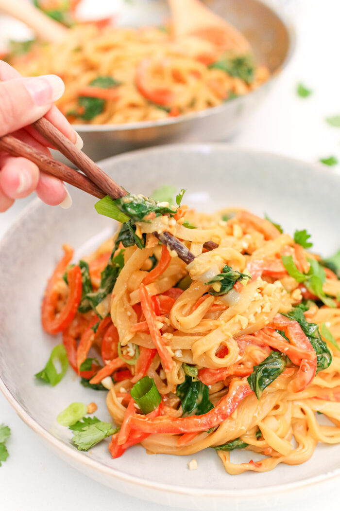 These 15 Minute Spicy Peanut Noodles are vegan, gluten-free, and deliciously saucy. Packed with colourful sautéed veggies, and topped with spicy and zesty peanut sauce, this weeknight meal is packed with flavour and nutrients!