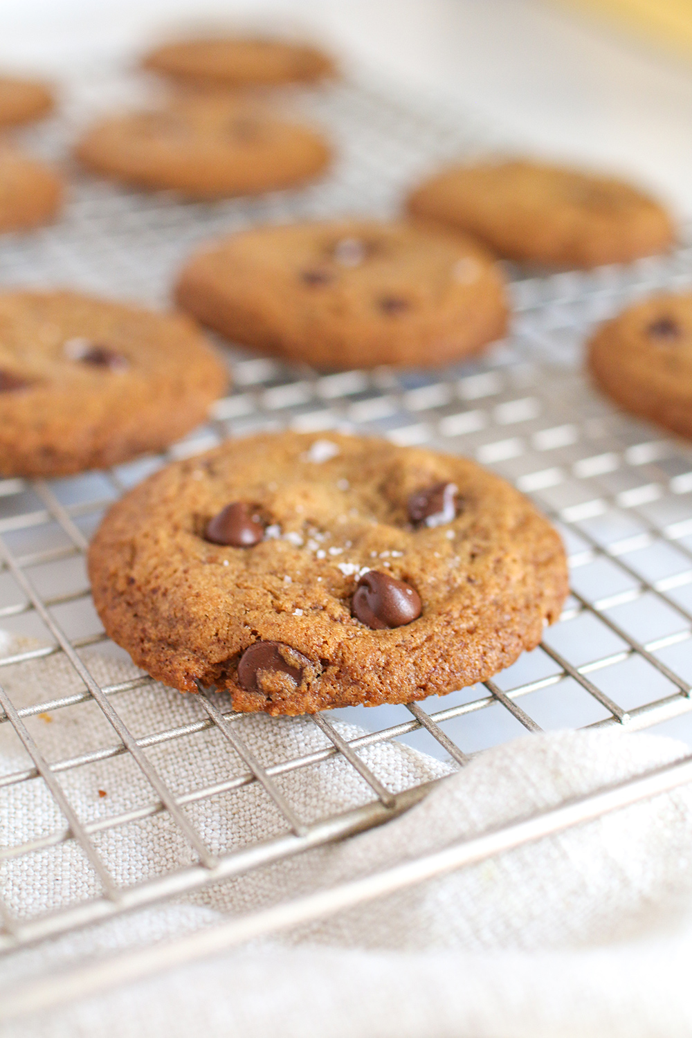 a close up of chocolate chip cookies on a wire cooling rack